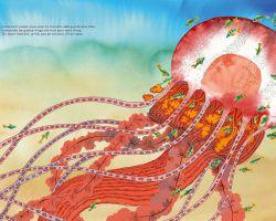Je suis la méduse - Alexandra Huard (Fourmis rouge)